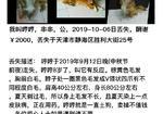 寻狗启示免费发布平台,有偿寻犬,酬金两千