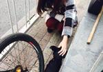 寻狗启示免费发布平台,北京崇文门新世界门口地下通道旁边捡到一只狗狗