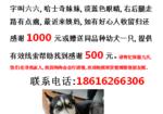 寻狗启示免费发布平台,上海奉贤区南桥镇南桥路寻找哈士奇