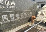 寻狗启示免费发布平台,山西晋城市供电公司门卫旁有一只走失狗狗