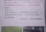 寻狗启示免费发布平台, 无锡吴都路酬谢五千元寻找边牧