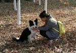寻狗启示免费发布平台,甘肃省酒泉市肃州区洪洋世纪新天地走失边境牧羊犬