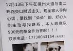 寻狗启示免费发布平台,黑白花泰迪幼犬
