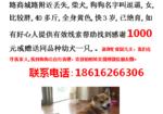 寻狗启示免费发布平台, 上海浦东新区浦城路商城路寻找柴犬
